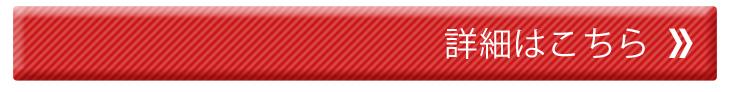 Hy+ カーマウントエディション本革レザーケース (ICカードホルダー、カーマウントプレート内蔵、スタンド機能付き)